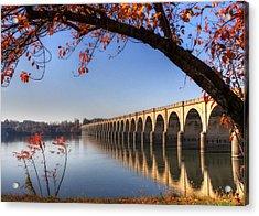 Shipoke In Autumn Acrylic Print by Lori Deiter