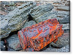 Acrylic Print featuring the photograph Shipwrecked ? by Miroslava Jurcik