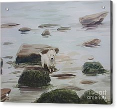 Acrylic Print featuring the painting Shirley's Dog by Martin Howard