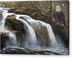 Shohola Falls Acrylic Print