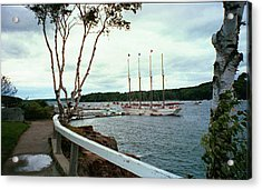 Shore Path In Bar Harbor Maine Acrylic Print by Judith Morris