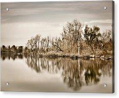 Acrylic Print featuring the photograph Shoreline 1 by Greg Jackson