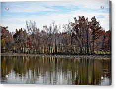 Acrylic Print featuring the photograph Shoreline 2 by Greg Jackson