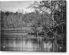 Acrylic Print featuring the photograph Shoreline 4 by Greg Jackson