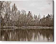 Acrylic Print featuring the photograph Shoreline 5b by Greg Jackson