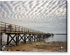 Shotley Coast Acrylic Print by Svetlana Sewell