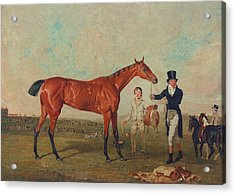 Shoveller Held By Her Trainer Will Chifney Acrylic Print by Benjamin Marshall