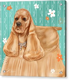 Show Dog Cocker Spaniel Acrylic Print