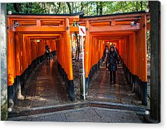 Shrine Walk Acrylic Print