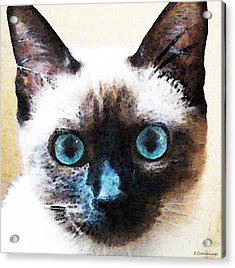 Siamese Cat Art - Black And Tan Acrylic Print by Sharon Cummings