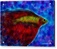 Siamese Fighting Fish II Acrylic Print by Anita Lewis