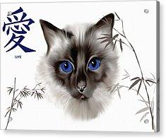 Siamese Love Acrylic Print by Elaine Manley