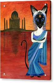 Siamese Queen Of India Acrylic Print by Jamie Frier