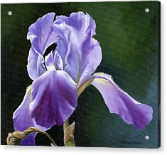 Acrylic Print featuring the painting Siberian Iris by Alecia Underhill