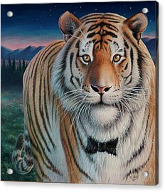 Zoofari Poster The Siberian Tiger Acrylic Print by Hans Droog