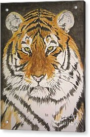 Siberian Tiger Acrylic Print by Regan J Smith