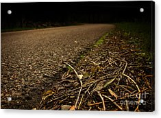 Side Of The Road Acrylic Print by Jolanta Meskauskiene