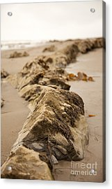 Side Winding Acrylic Print by Amanda Barcon
