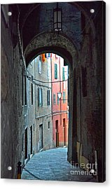 Siena Italy Acrylic Print by Amy Fearn