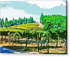 Sierra Foothills Vineyard Acrylic Print by Charlette Miller