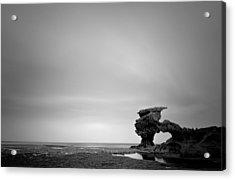 Sierra Nevada Rocks Acrylic Print by Mihai Florea