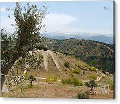 Sierra Nevada - Springtime Acrylic Print by Phil Banks