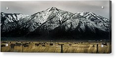Sierra Nevada Mountains Near Lake Tahoe Acrylic Print