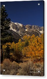 Sierra Nevadas In Autumn Acrylic Print by Ron Sanford