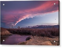 Sierra Wave And Lower Owens Acrylic Print by Cat Connor