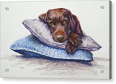 Acrylic Print featuring the painting Siesta by Cynthia House
