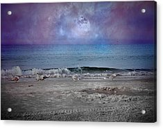 Siesta Key Moon In My Pocket Acrylic Print by Betsy Knapp