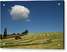 Silage Collection Acrylic Print