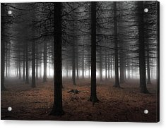 Silence Acrylic Print by Dragisa Petrovic