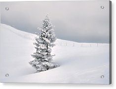Acrylic Print featuring the photograph Silence by Graham Hawcroft pixsellpix