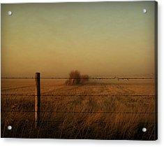 Silence Of Dusk Acrylic Print