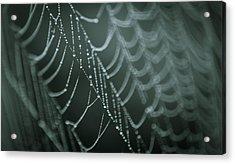 Silent Symphony Acrylic Print