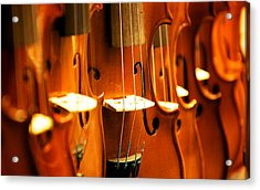 Silent Violins Acrylic Print by Maurizio Incurvati