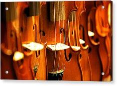 Silent Violins Acrylic Print by Maurizio Incurvati