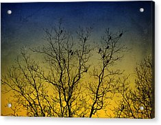 Silhouette Birds Sequel Acrylic Print