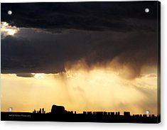 Silhouette Acrylic Print by Michele Richter