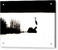 Acrylic Print featuring the photograph Silhouette by Zinvolle Art