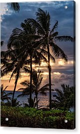 Silhouetted Palm Trees Acrylic Print by Scott Mead