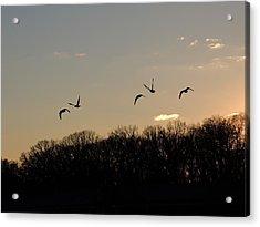 Silhouettes At Dusk Acrylic Print