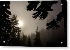 Silhouettes Of Trees On Mt Rainier Acrylic Print
