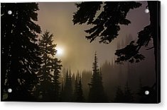 Silhouettes Of Trees On Mt Rainier II Acrylic Print