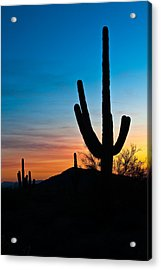 Silhouettes Acrylic Print