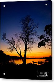 Acrylic Print featuring the photograph Silhouettes by Trena Mara