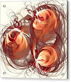 Silk Labyrinth Acrylic Print by Anastasiya Malakhova