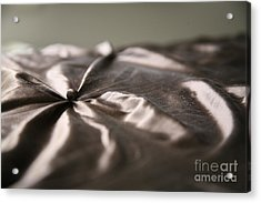 Acrylic Print featuring the photograph Silk by Lynn England