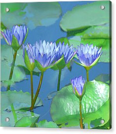 Acrylic Print featuring the photograph Silken Lilies by Holly Kempe